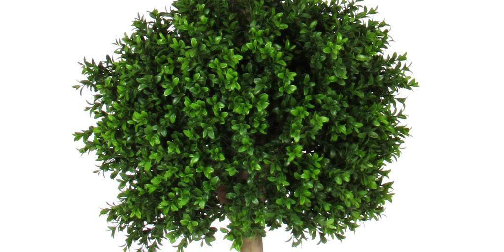 Piante artificiali piante artificiali for Piante artificiali